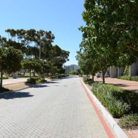 Cape Town Stadium 03