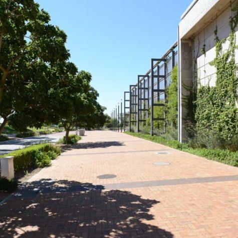 Cape Town Stadium 04