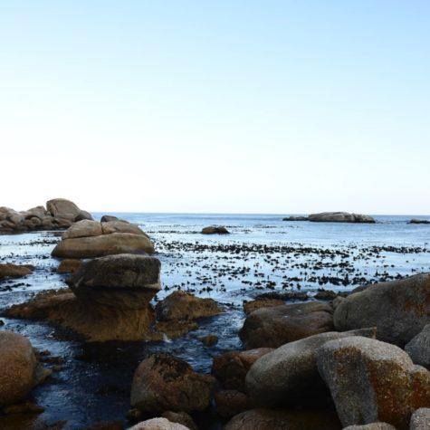 Cosy Bay 04