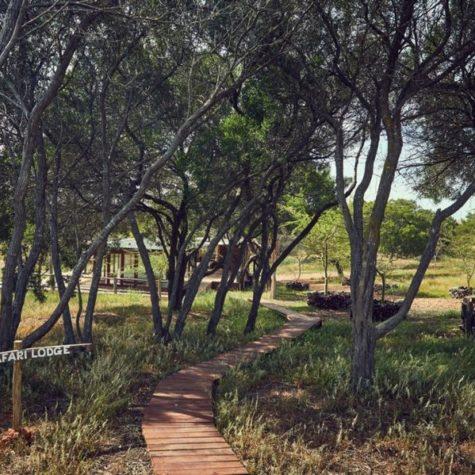 Inyoni Safari 20