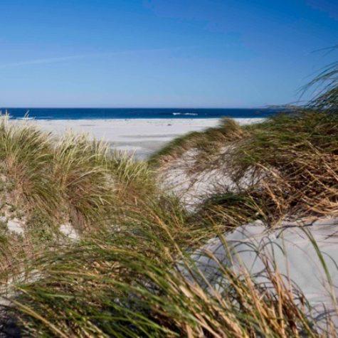 Noordhoek beach 03
