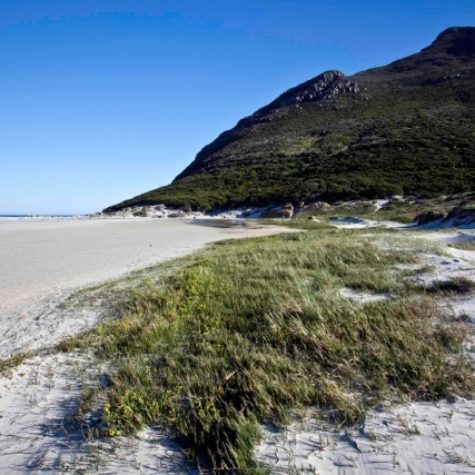 Noordhoek beach 04