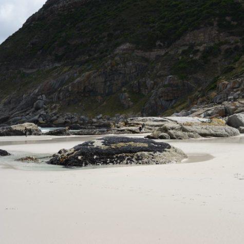 Noordhoek beach 13