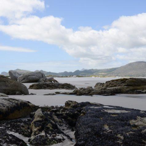 Noordhoek beach 15