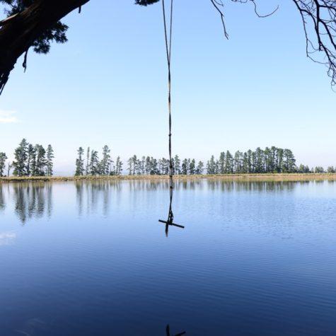 Lourensford Binksburg Dam 10