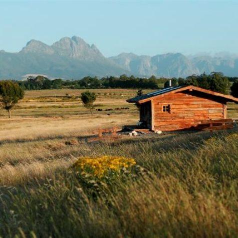 Mountain Ray_Stellenbosch 03