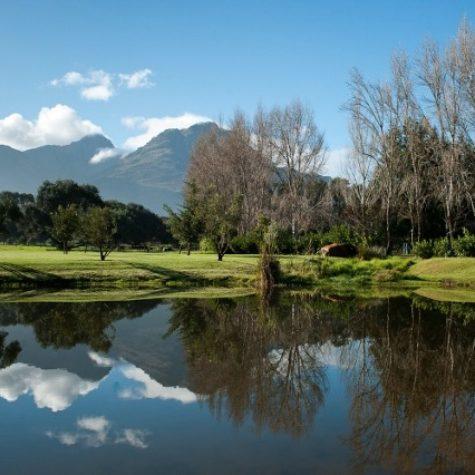 Waterfort Farm_Stellenbosch 03