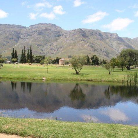 Waterfort Farm_Stellenbosch 04