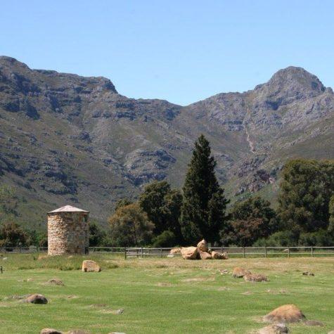 Waterfort Farm_Stellenbosch 05